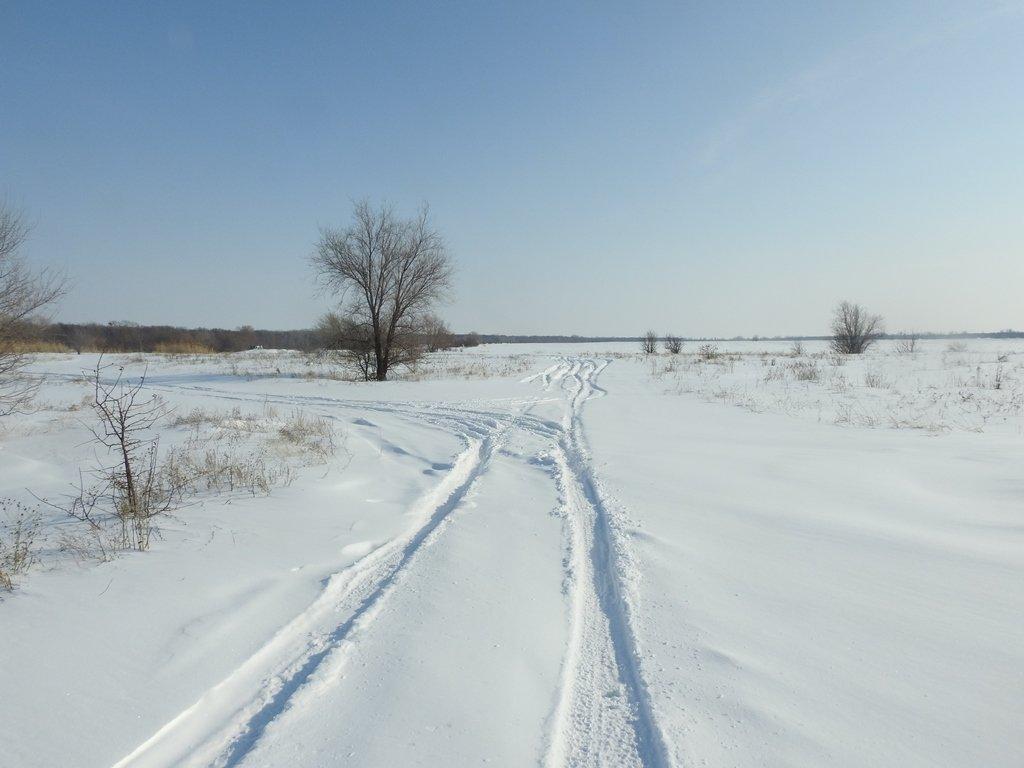 Дорога к Большому Иргизу