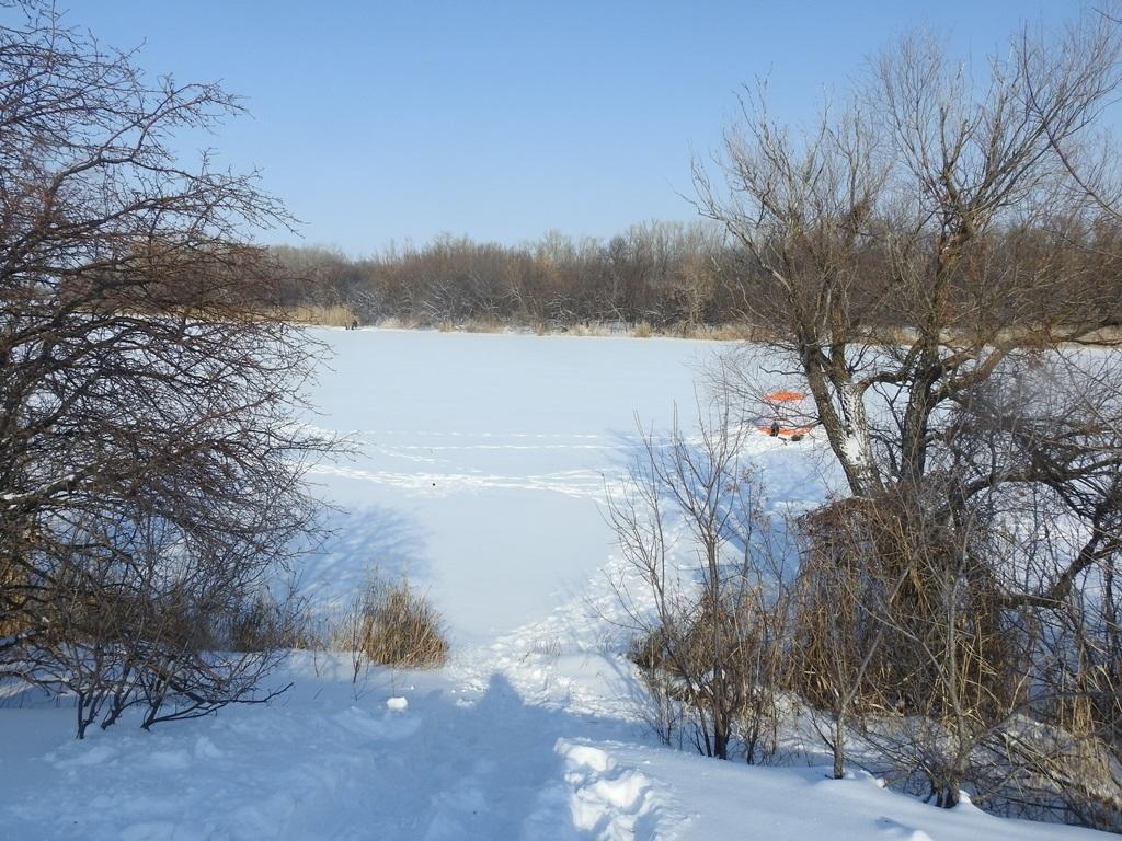река Большой Иргиз зимой