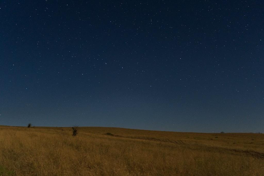 Звезды в степи
