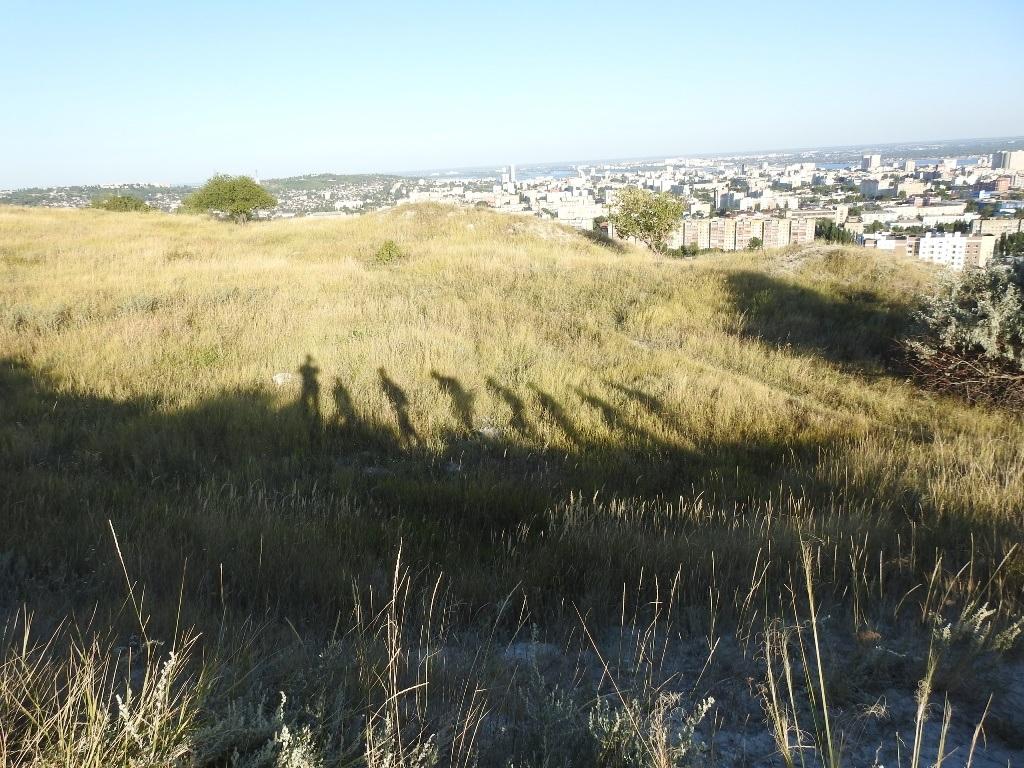 Тени на холмах