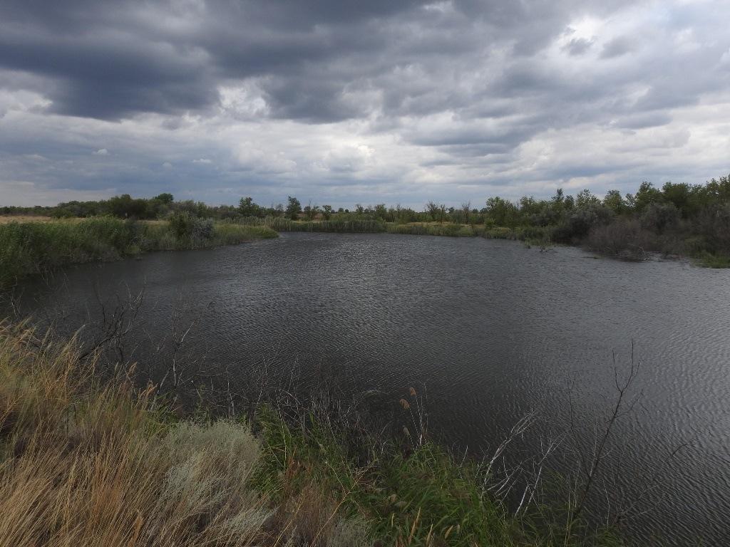 река Саратовка