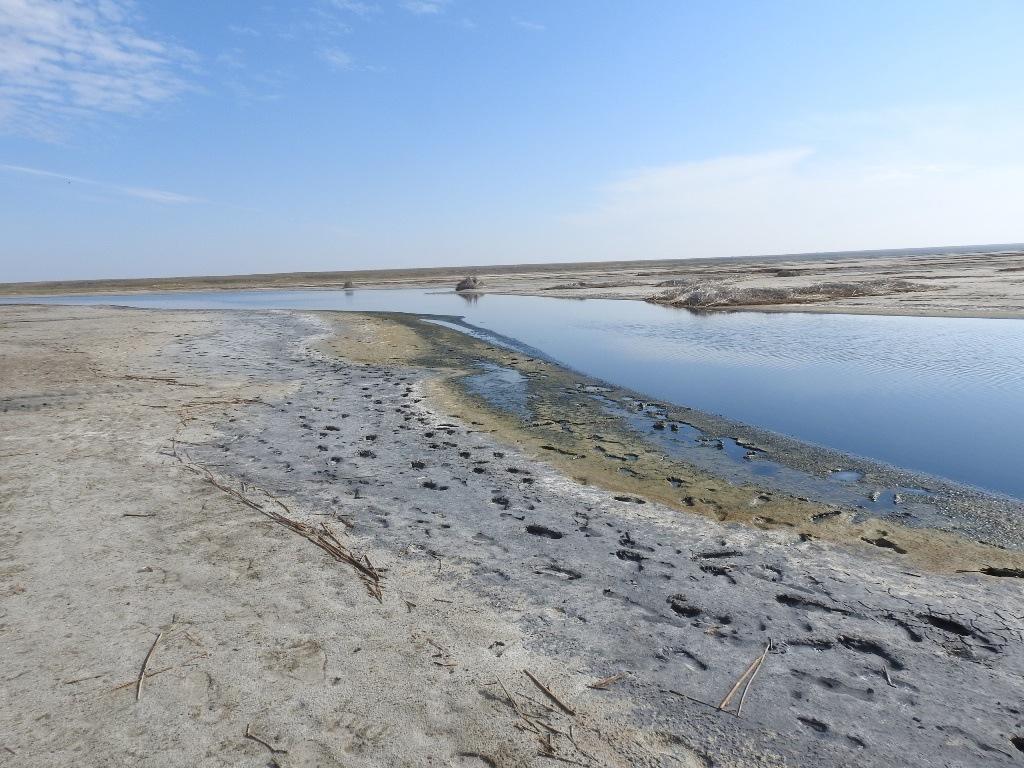 река Хара