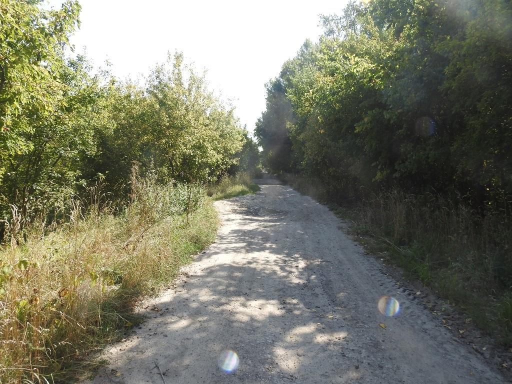 Заброшенная дорога