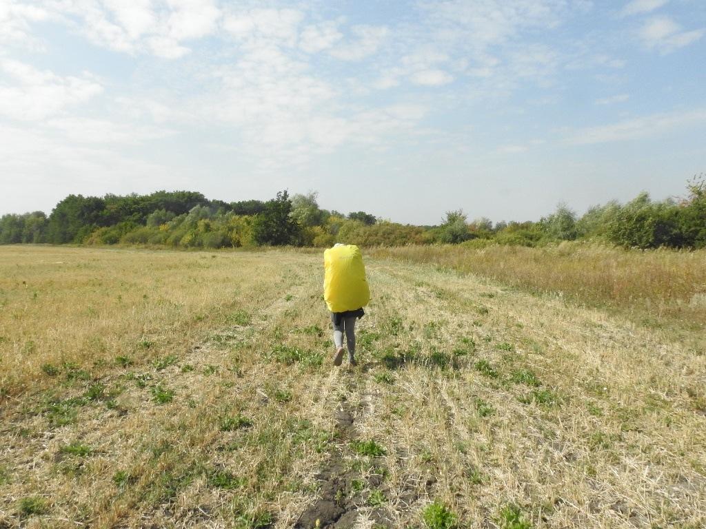 В походе по полям