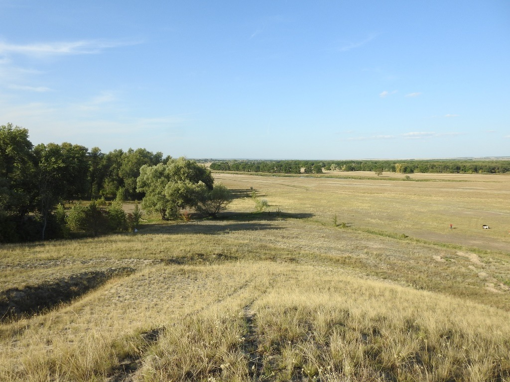 Лысогорский район