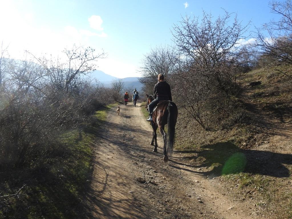 Конные прогулки Южная Демерджи