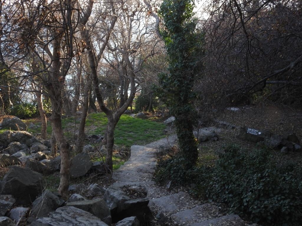 Тропа на Голубовские камни