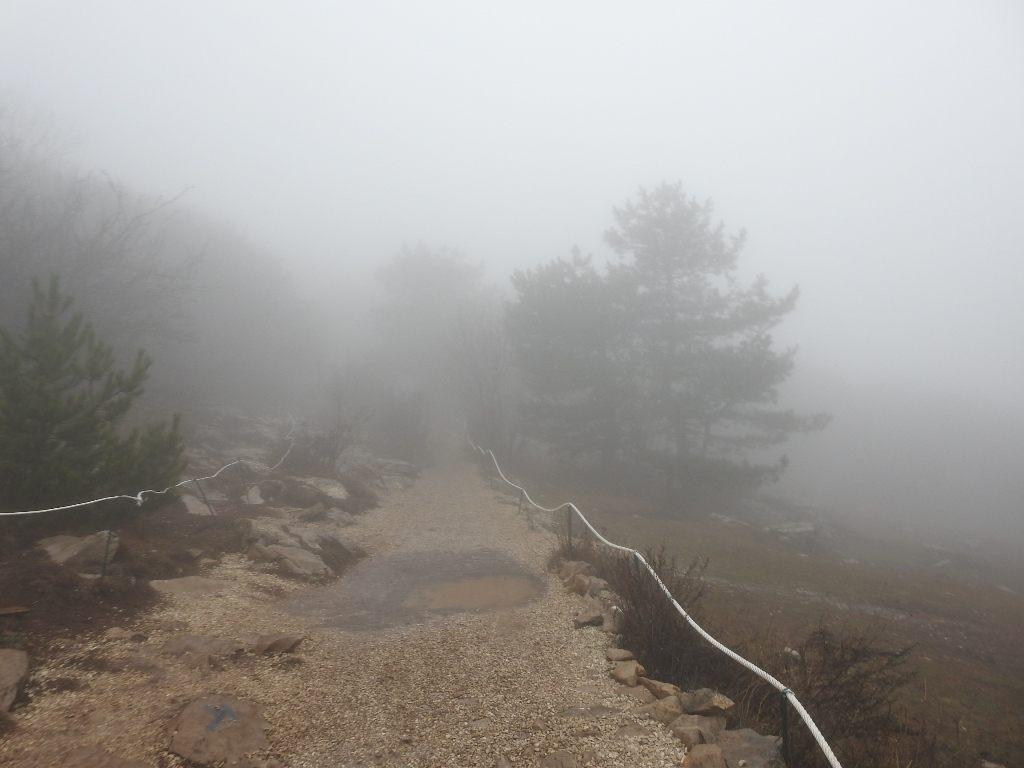 Тропа Ай-Петри в тумане