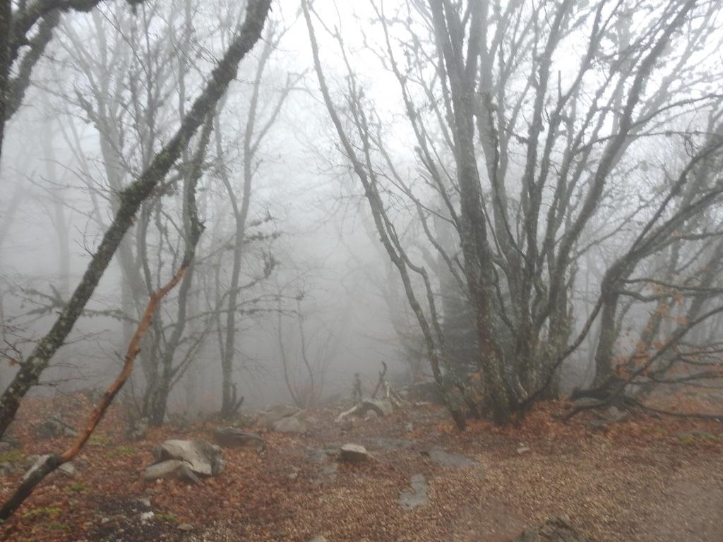 Ай-Петри в тумане