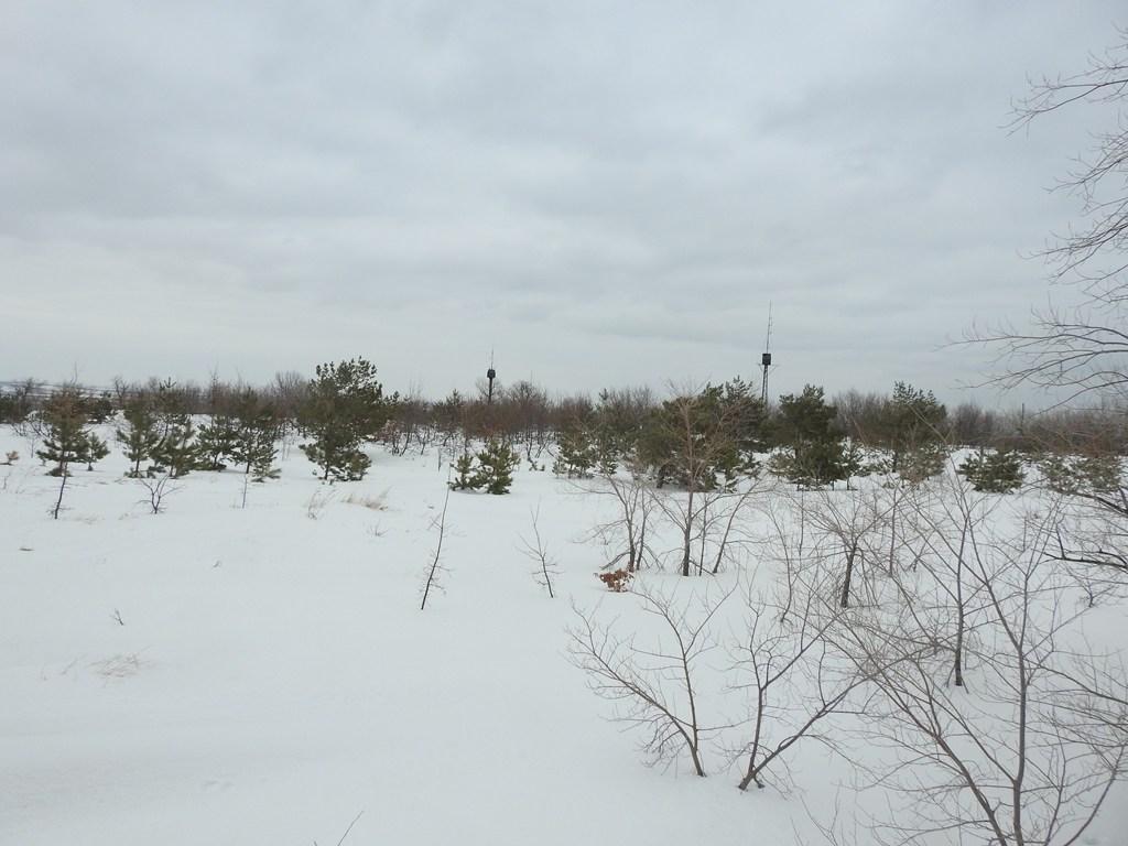 Лысая гора, Саратов