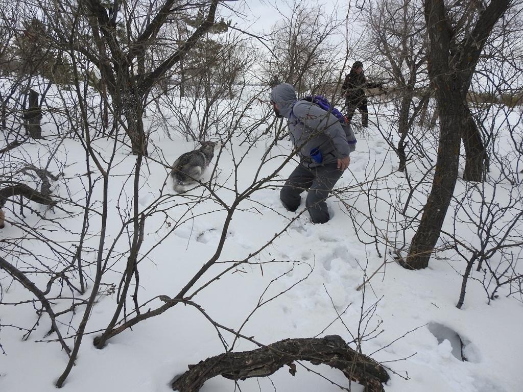 Провалились в снег