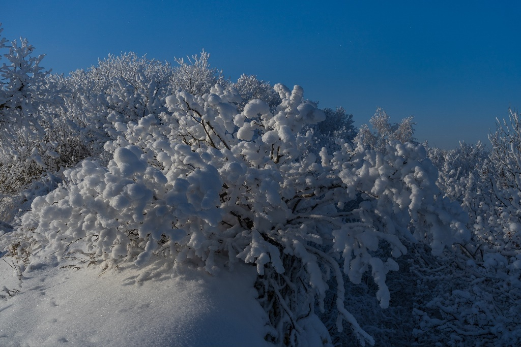 Снежные пейзажи