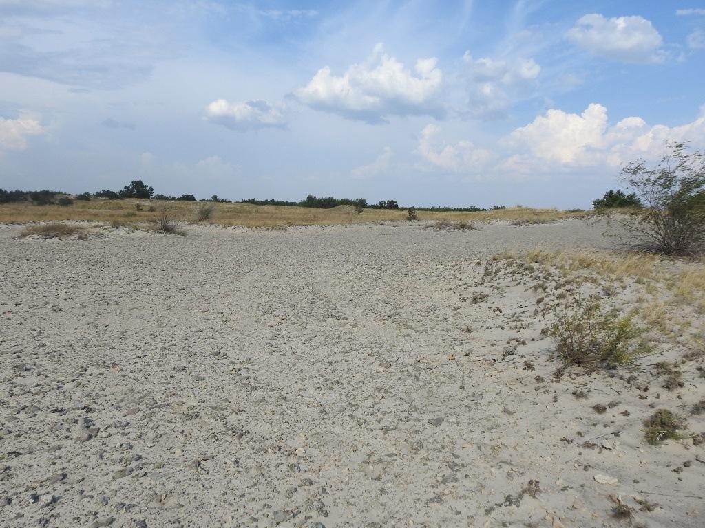 Пески Волгоградской области