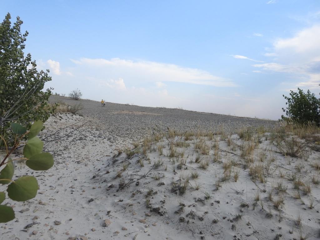 Песчаные холмики