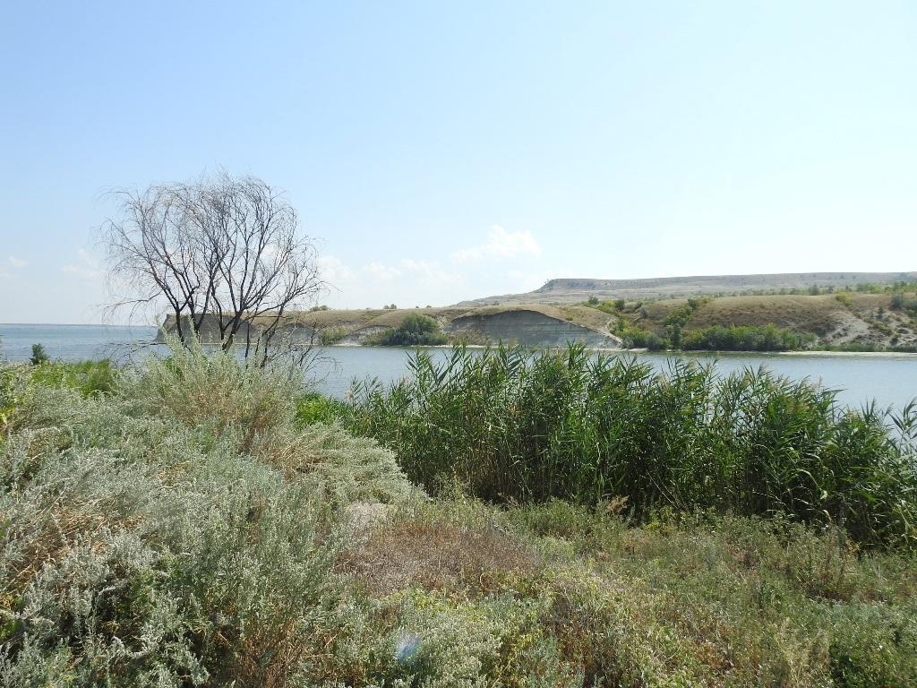 залив Даниловка