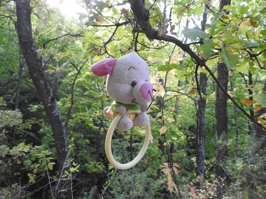 Игрушки в лесу