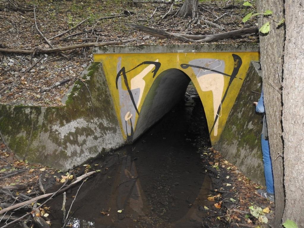 Тоннель на кумысной поляне