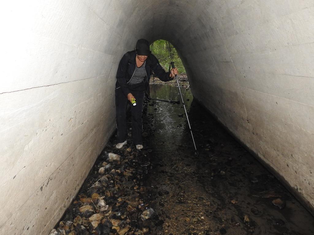Тоннель в Денежном овраге