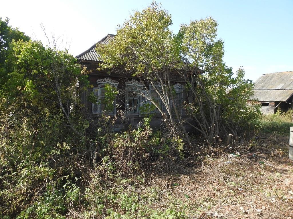 Заросший дом в Андреевке