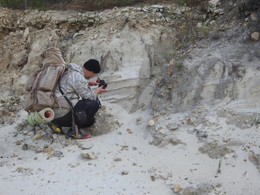 Песчанник
