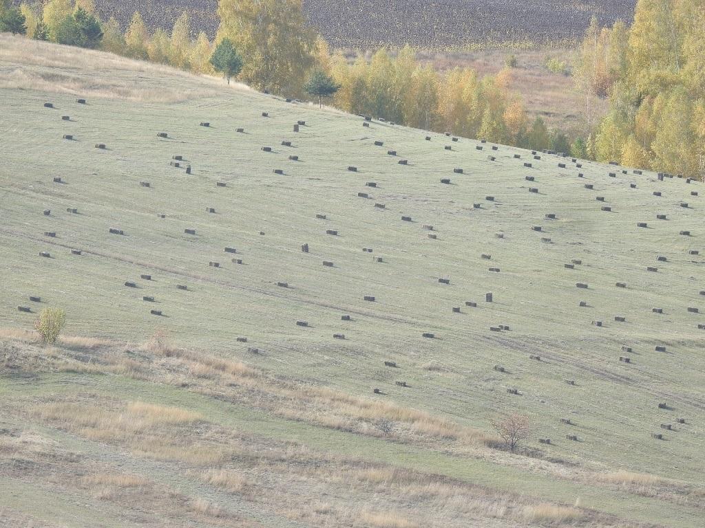 Снопы на холмах