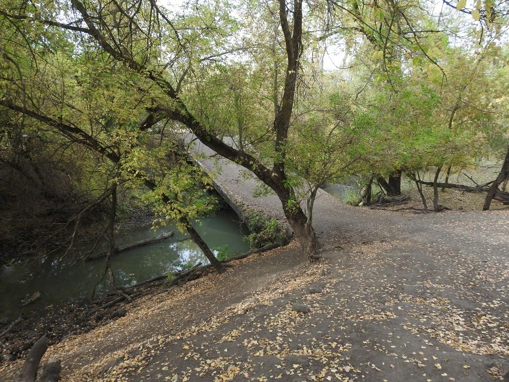 Мост через Кочелай