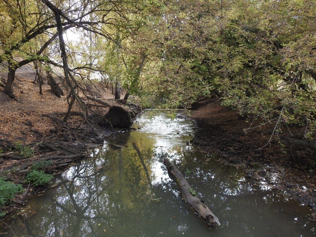 река Кочелай