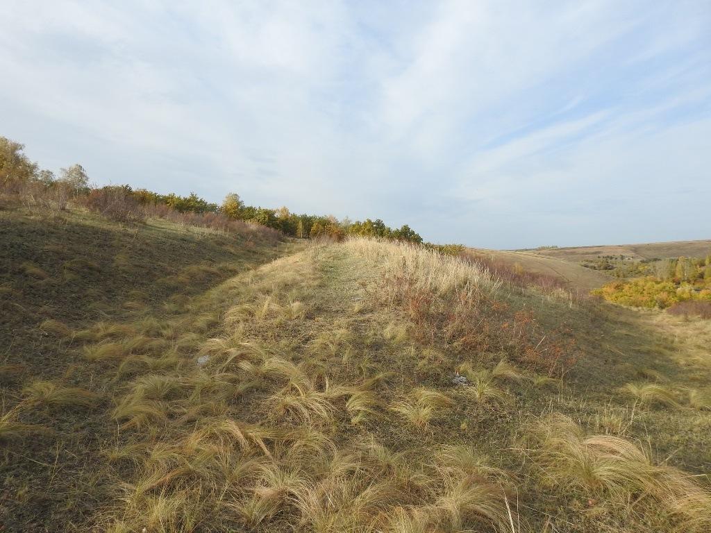 геоглиф в долине Кочелая