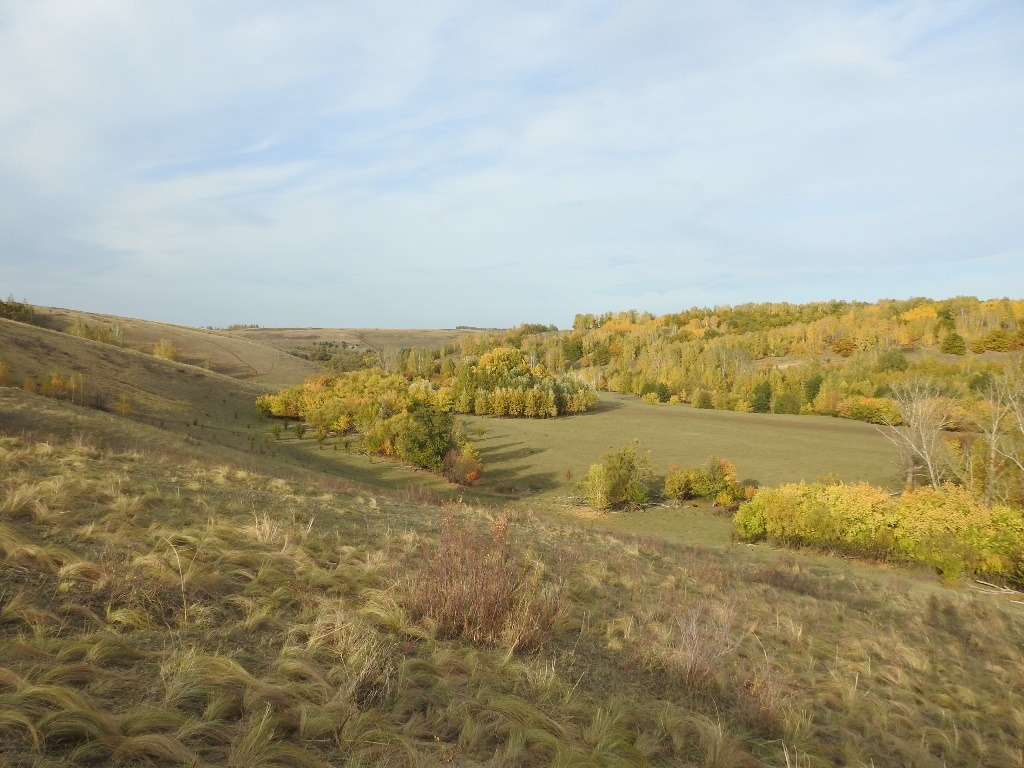 Долина реки Кочелай