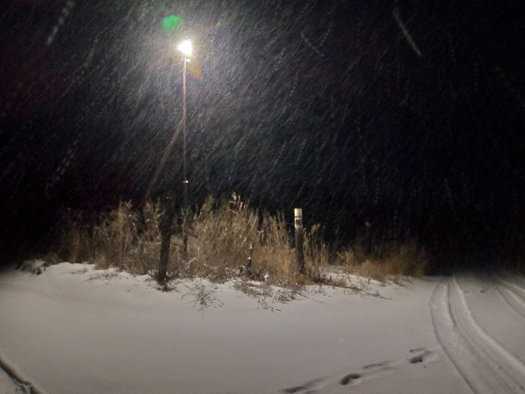 Ночь, зима, фонарь