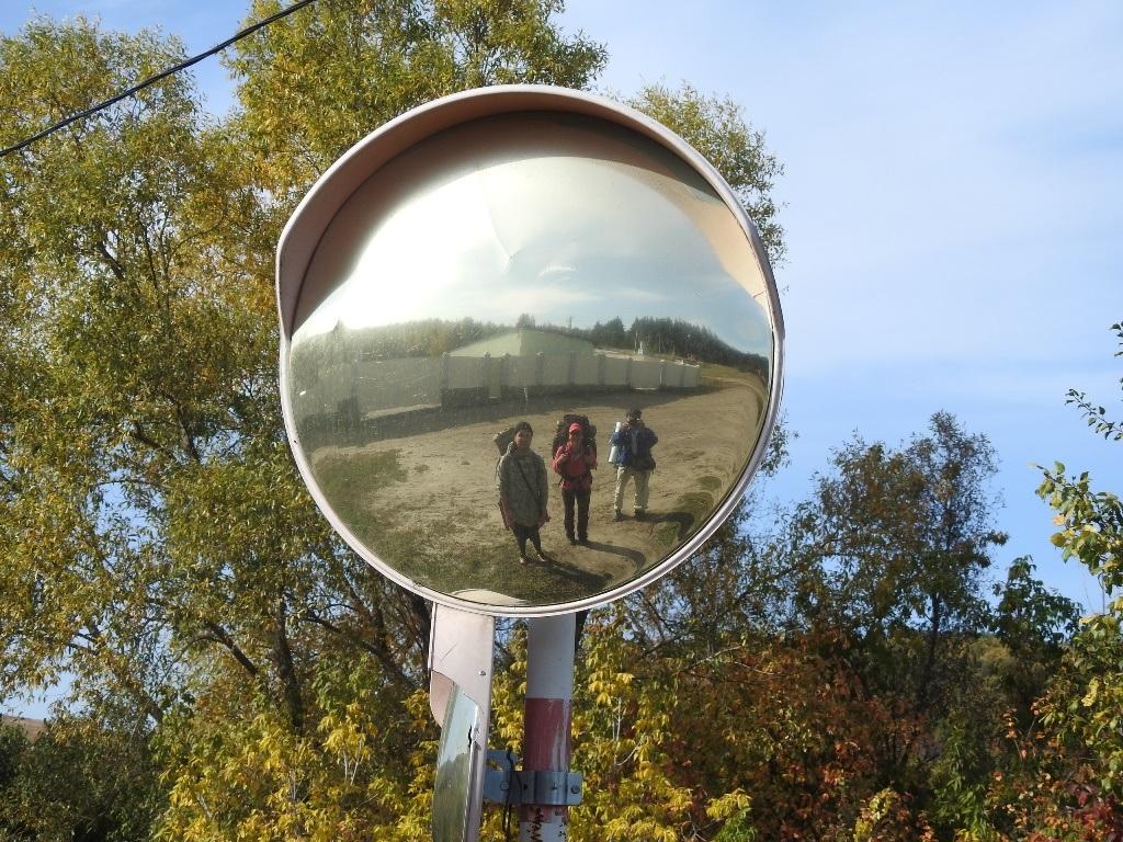 В сферическом зеркале