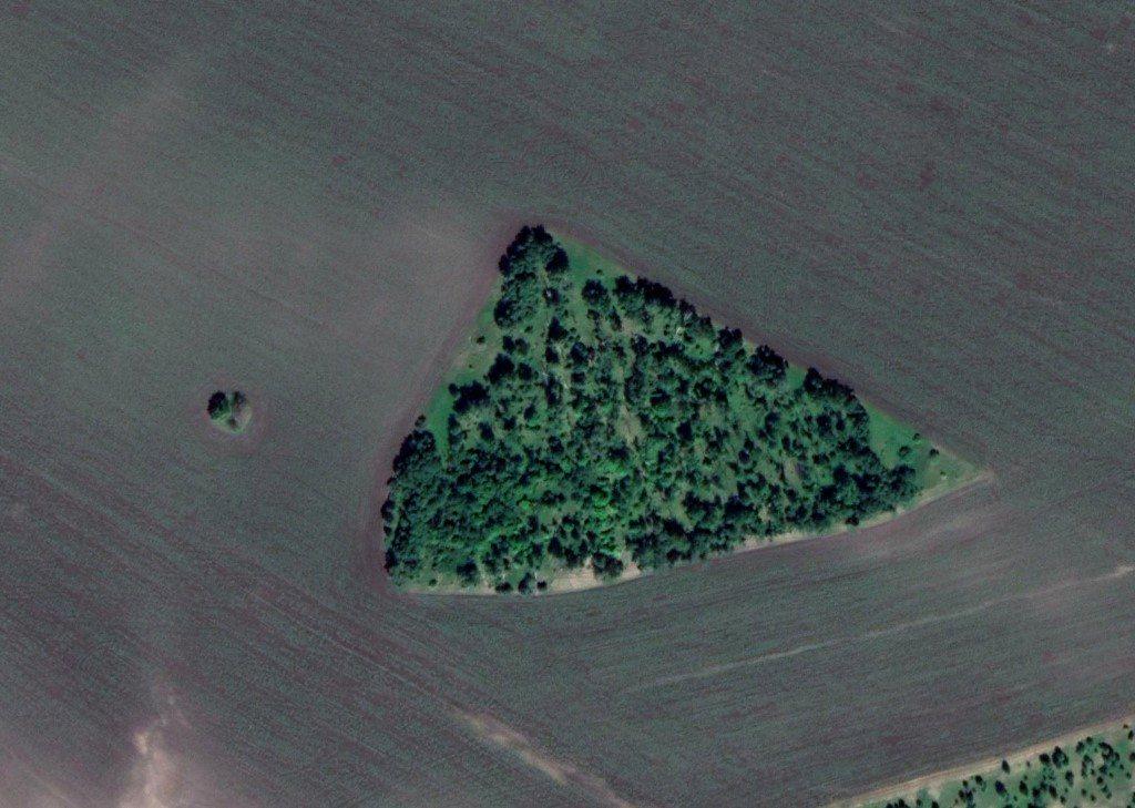 Треугольник в полях