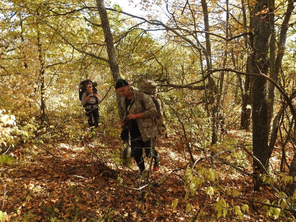С рюкзаками через лес