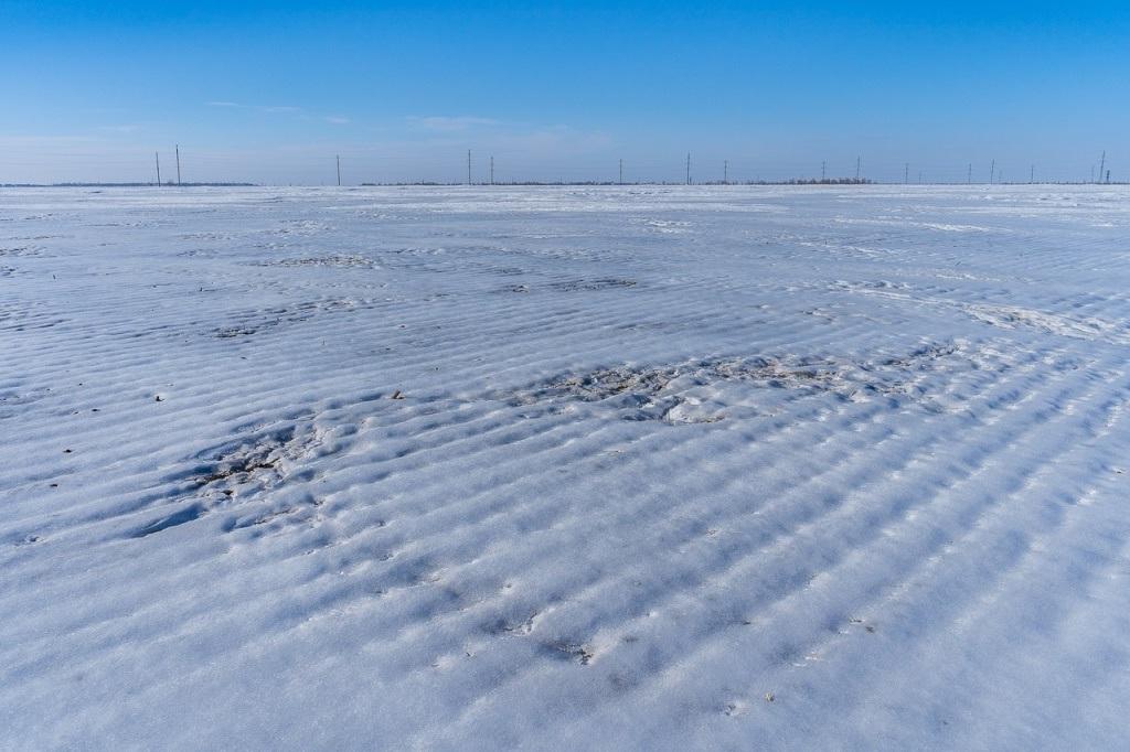 Снежное поле