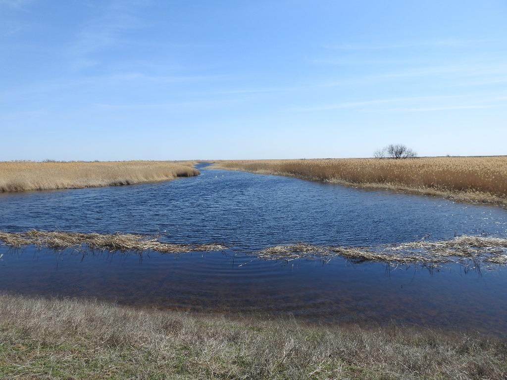 Дельта реки Еруслан