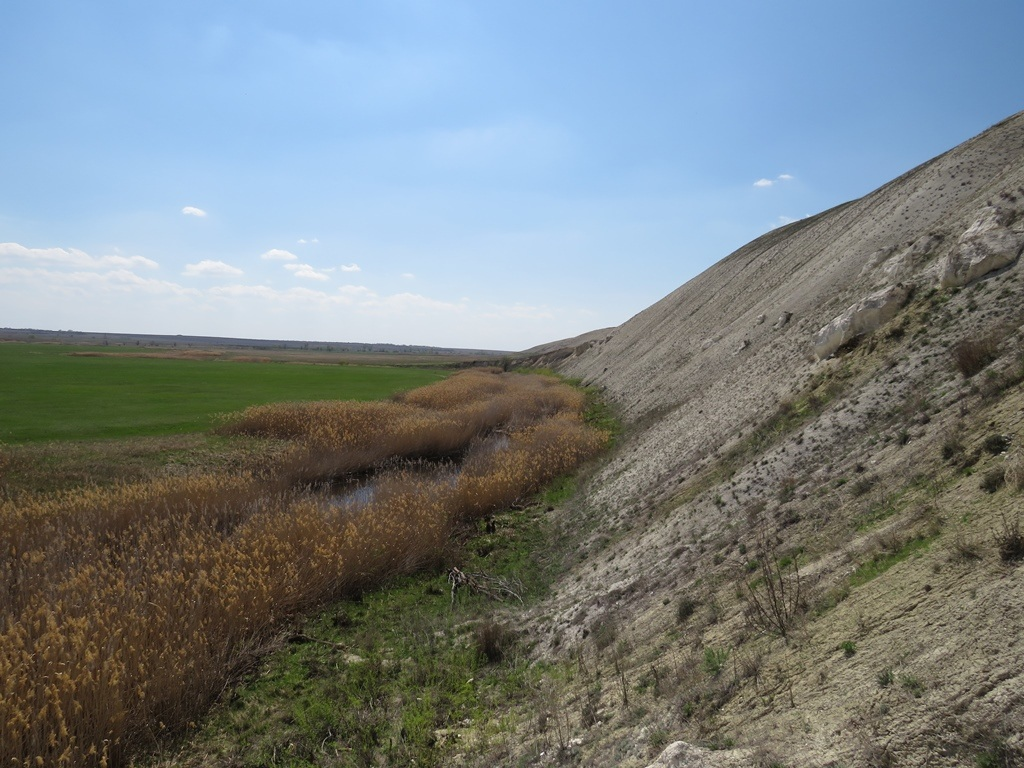 Меловые склоны на реке Бурлук
