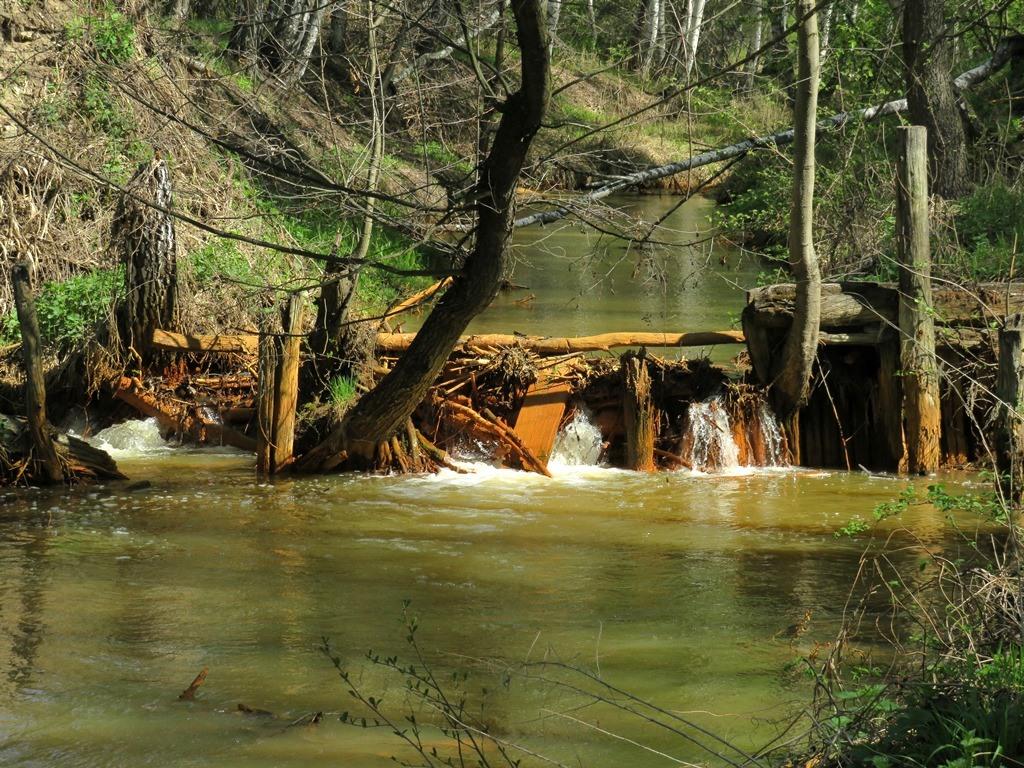 река Соколка плотина