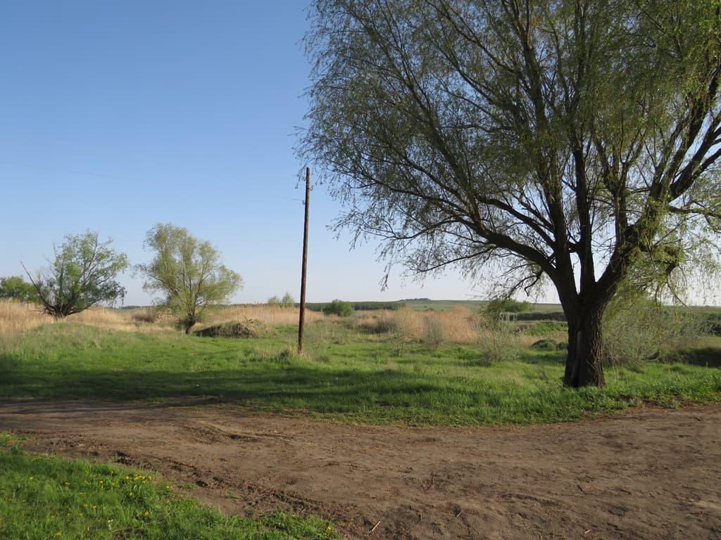Окрестности реки Чардым