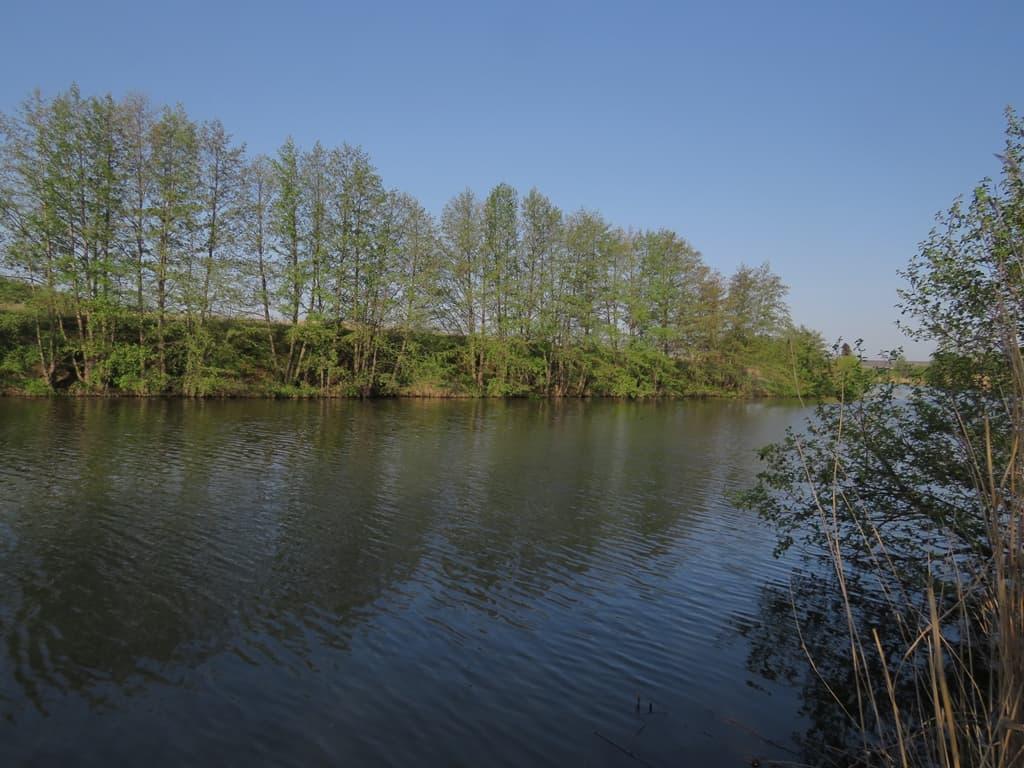 река Чардым