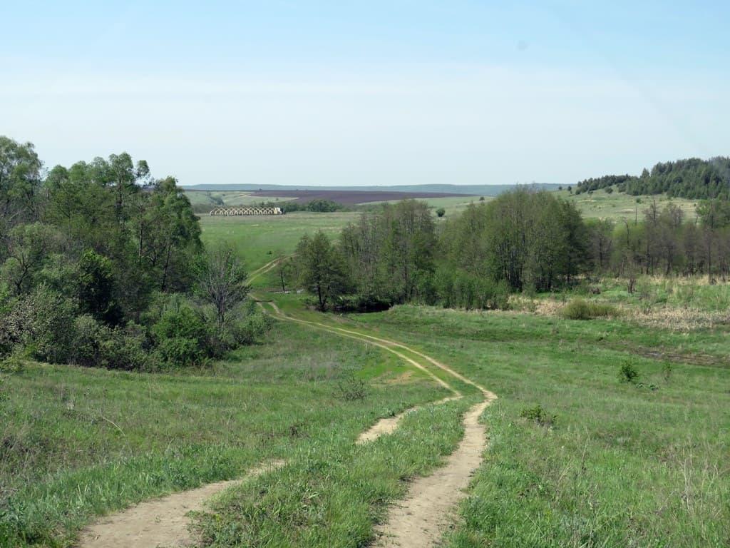Дорога среди бугров