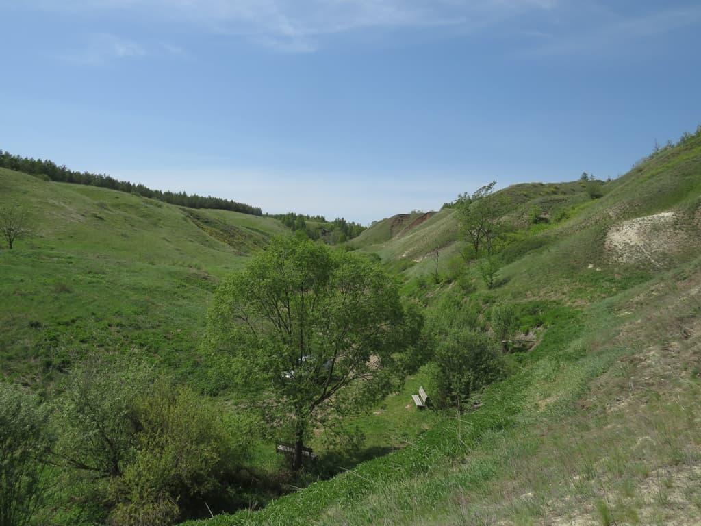 Холмы у Гремячки