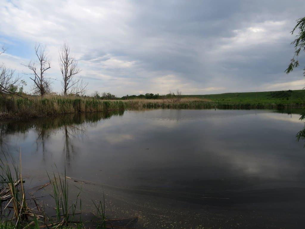 Запруда на реке Горючка