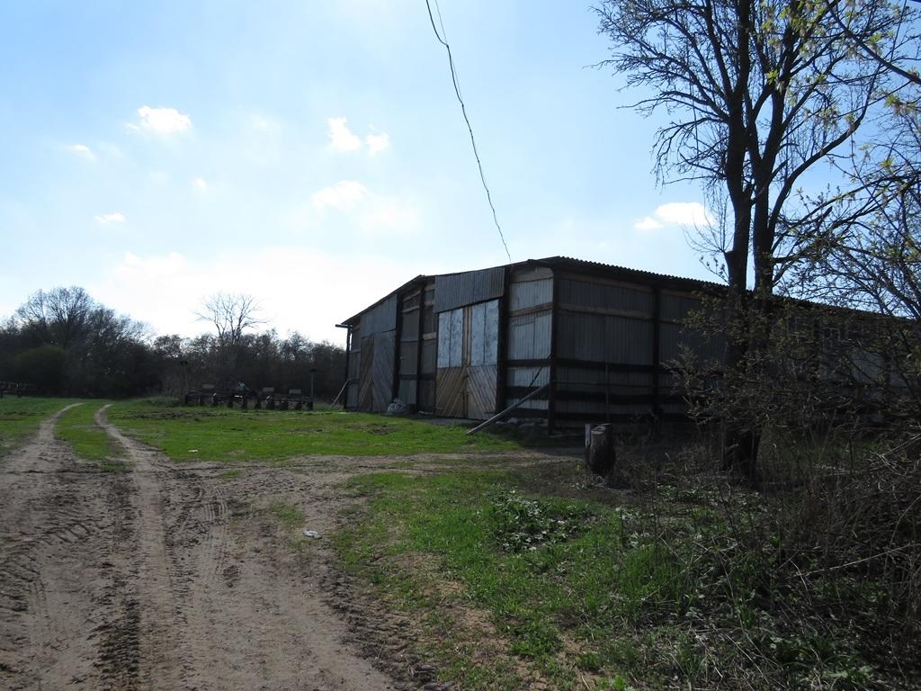 Хозяйства на окраине Бурлука