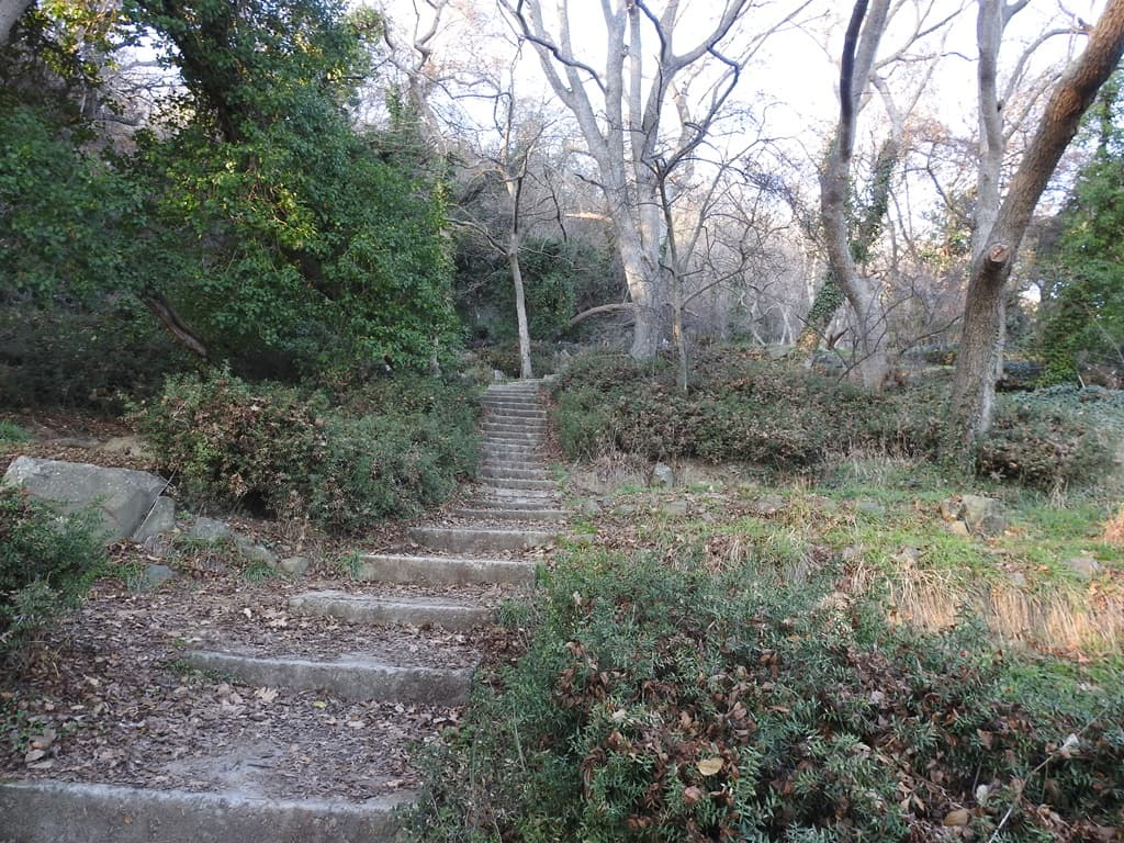 Голубовские камни тропа наверх