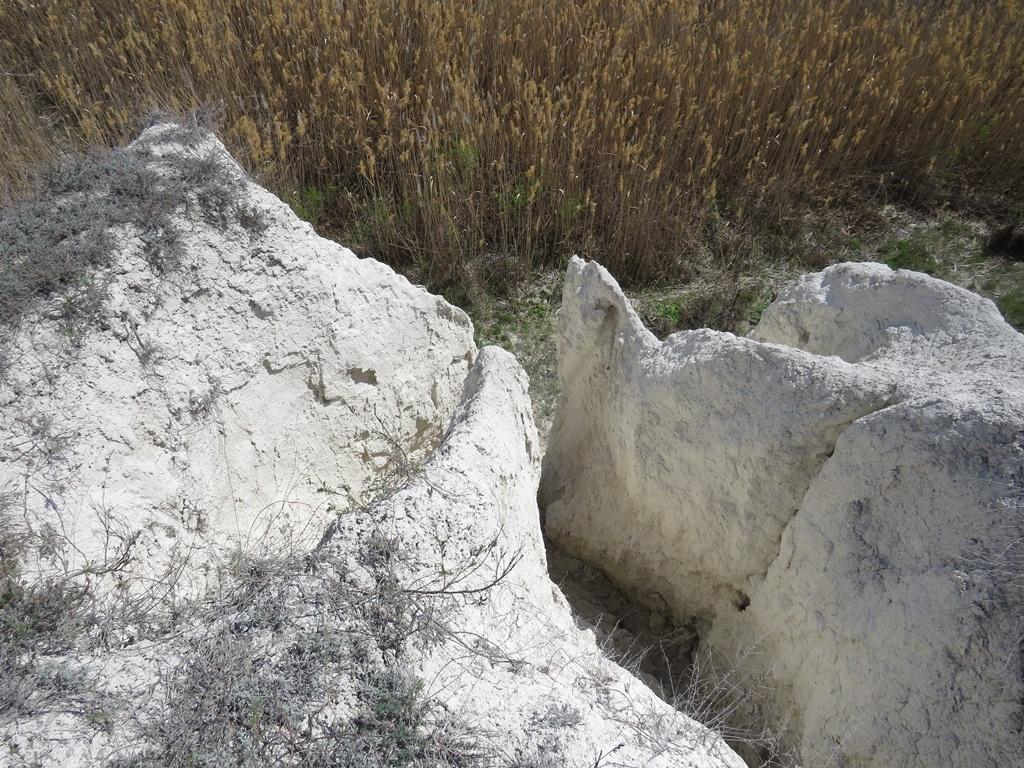 Меловые обрывы на реке Бурлук
