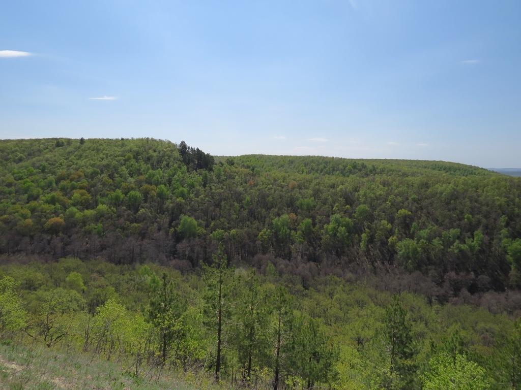 Вид с Кудеяровой горы
