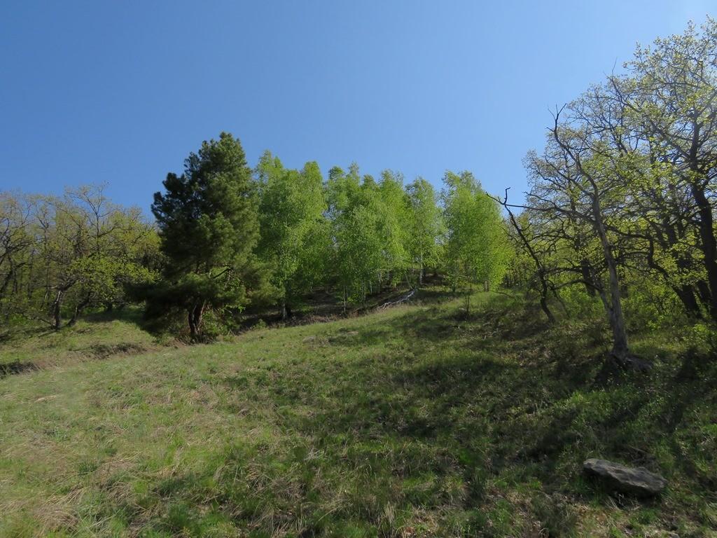 Кудеярова гора