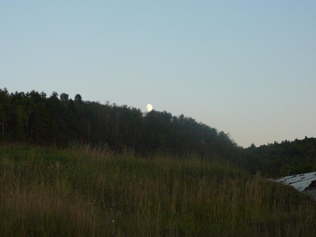 Луна за лес заходит