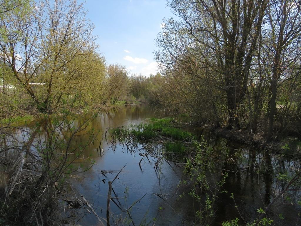 река Бурлук