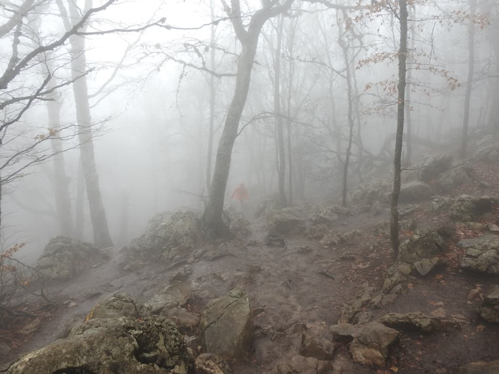 Ай-Петри сильный туман